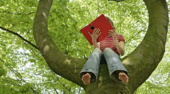 Child reading in a tree