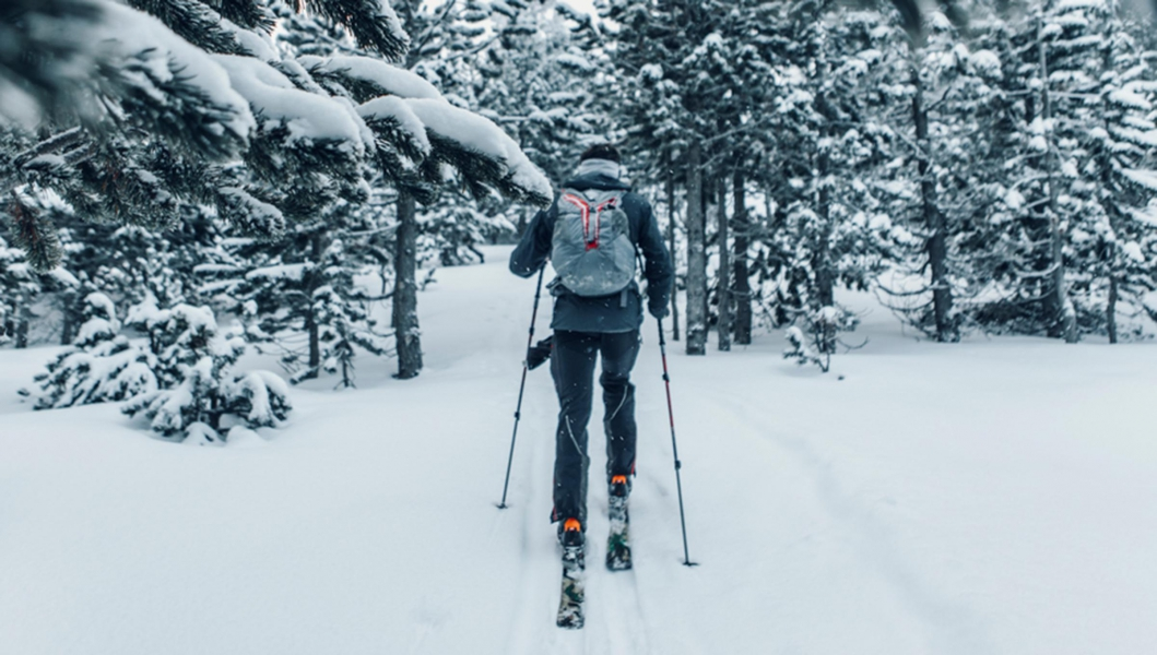 Cross country skier on snow covered trail