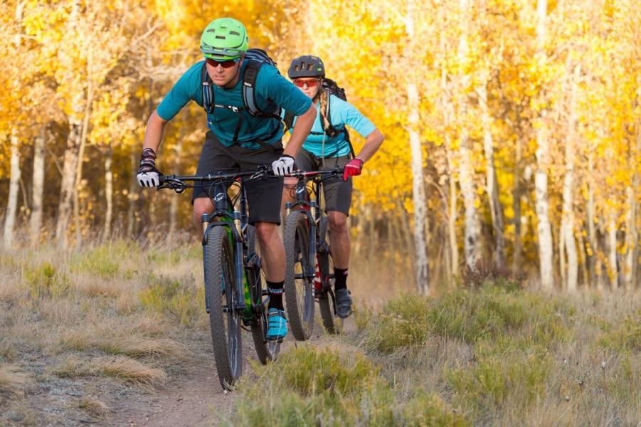 People biking on a trail