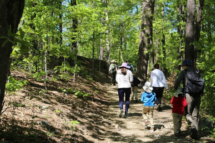 People walking on a hiking trail